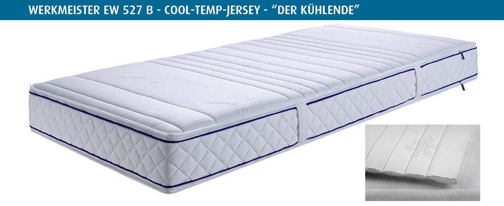 Werkmeister-Cool-Temp-Bezug-EW527-B-der-Kuehlende-Bezug