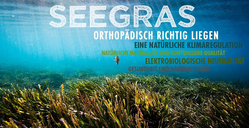 dormiente-Natur-Pur-Deluxe-Seegras-Matratze-Flensburger-Bettenwelt