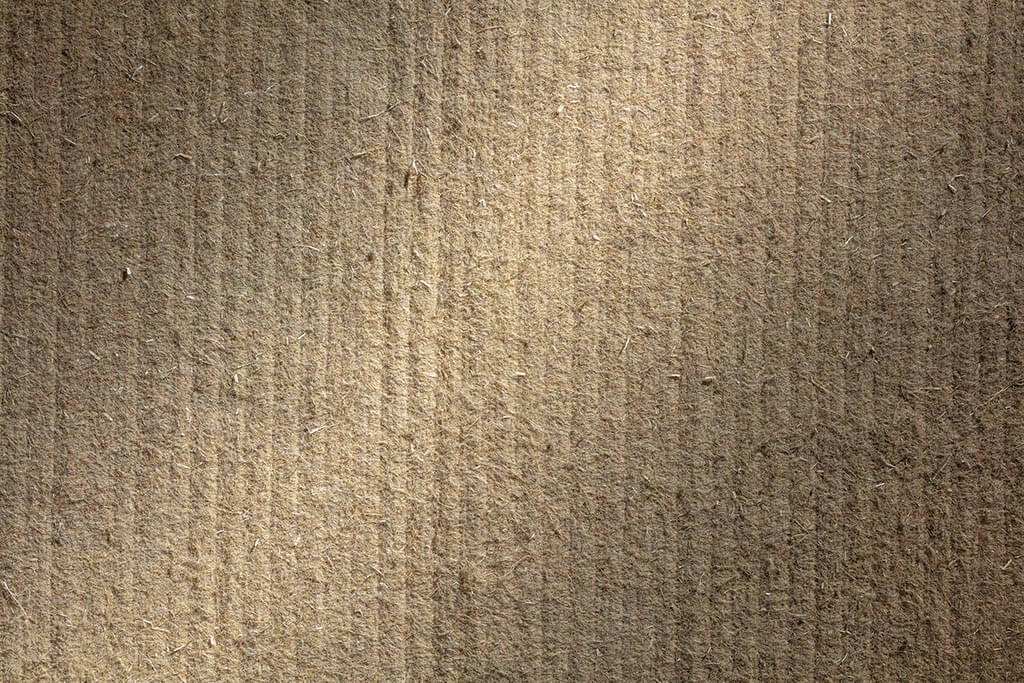 Dormiente-Repro-Hanf-Detailansicht